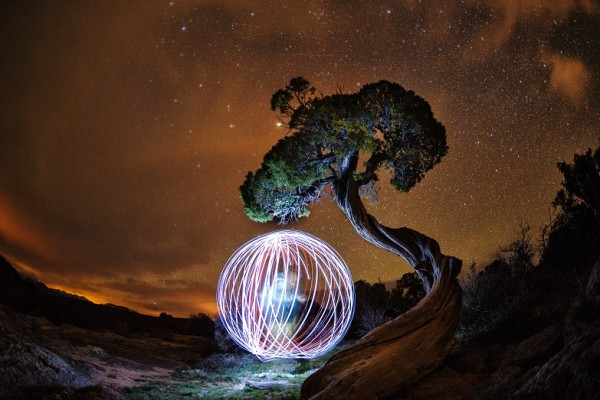 A figure standing beside a gnarled tree spins a light to create a glowing sphere
