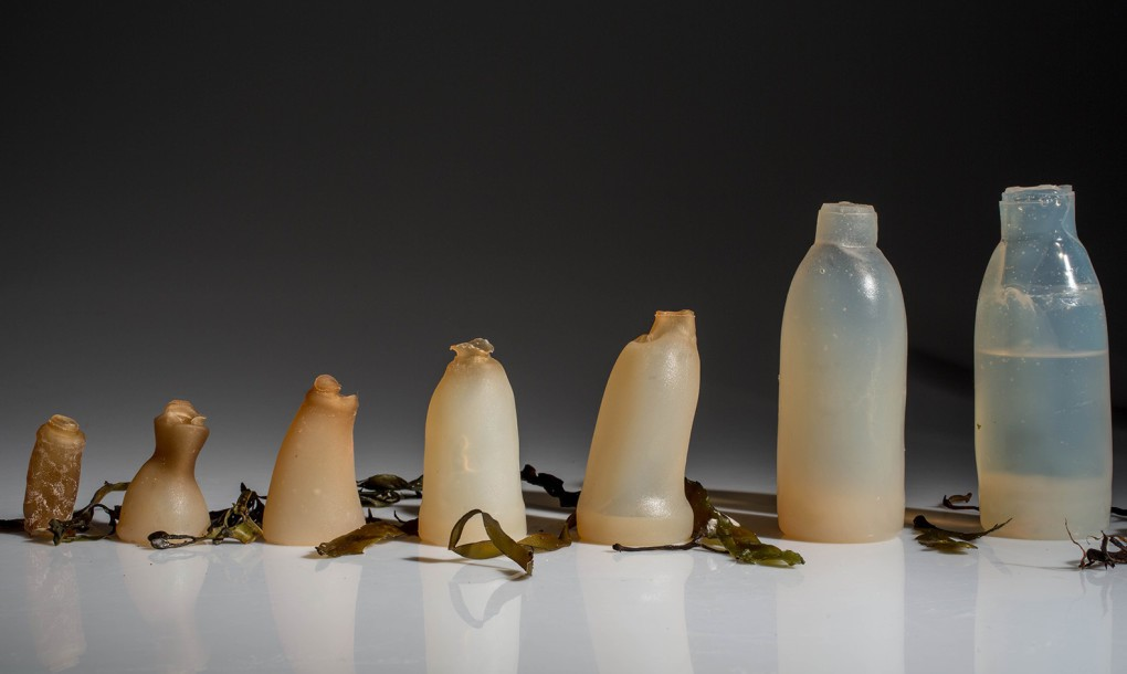 Algae-Water-Bottle-Ari-Jónsson-1020x610