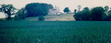 primrose-on-hill-0011-468x184