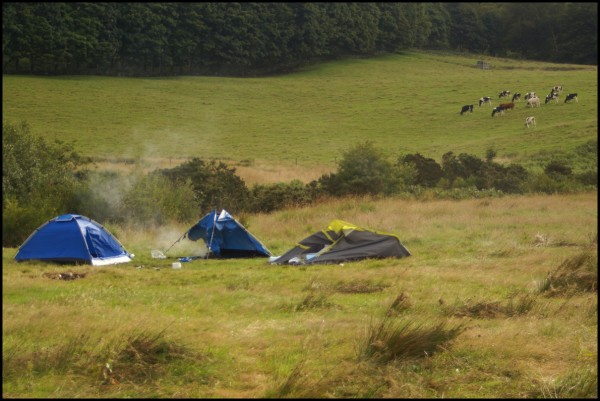 And please, don't burn down your tent in the morning; it's rude.