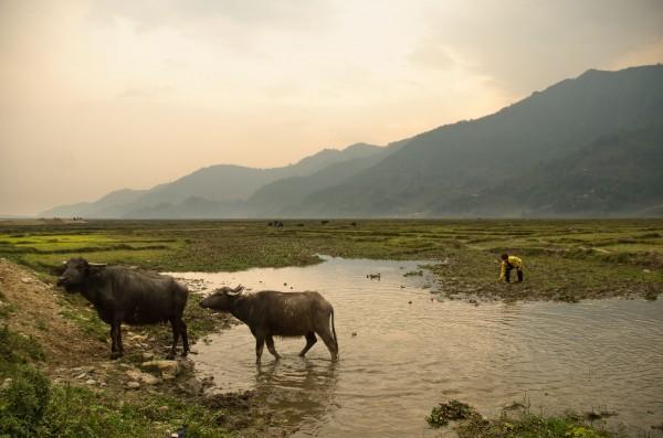 Pame, NEPAL 2013