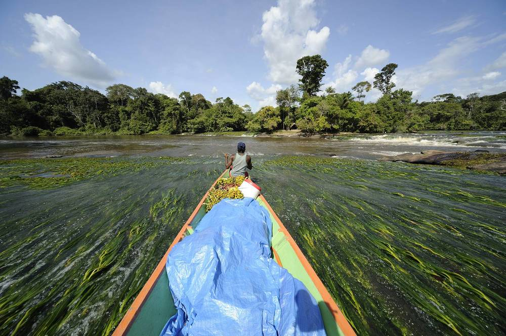 1-Suriname