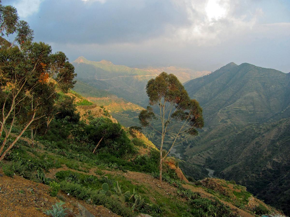 20-Eritrea