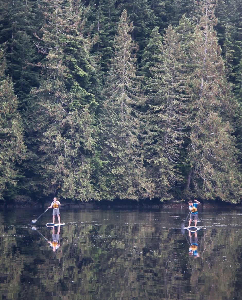 12-paddleboards