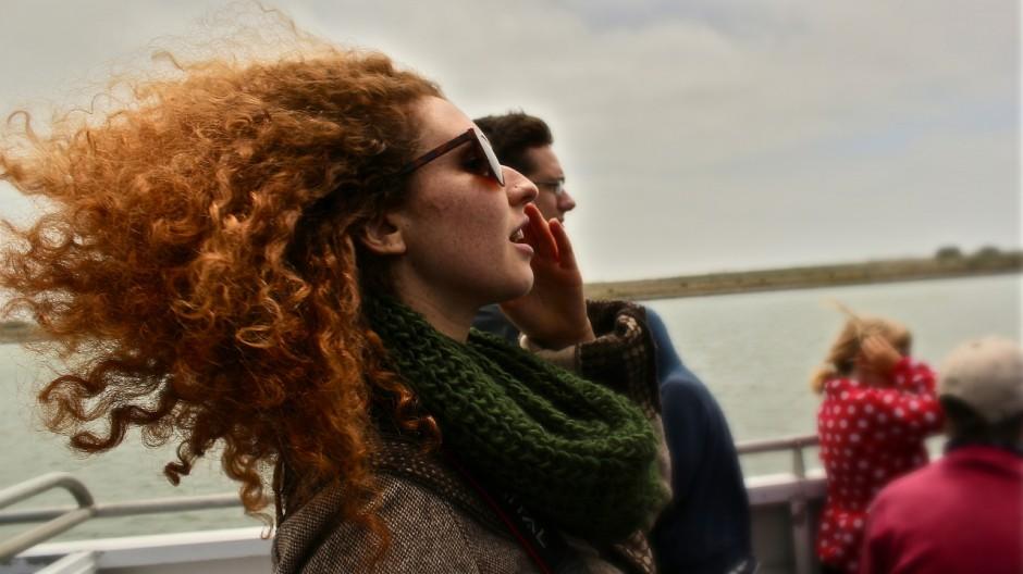 19-ferry
