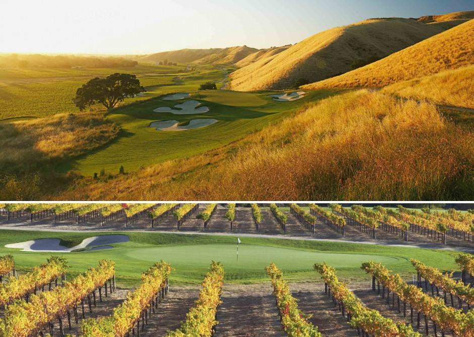 4-wente-vineyards