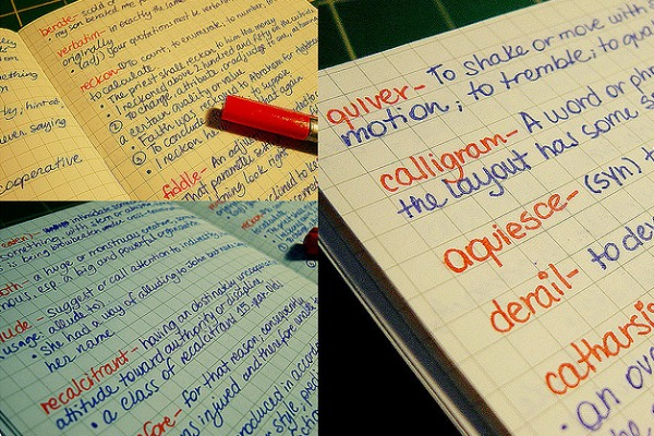 20 obsolete English words that should make a comeback by: Heather Carreiro  20101107-notebook