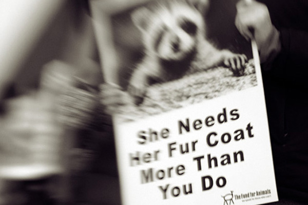 PETA protest poster