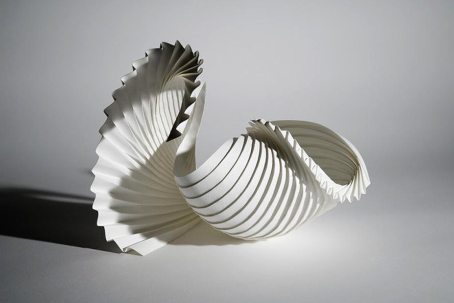 Partial Shell paper art
