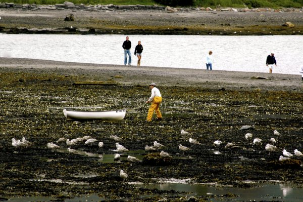 Fisherman pulling a boat across a muddy beach in Maine