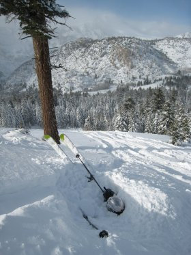 Buried in powder, June Mountain, California