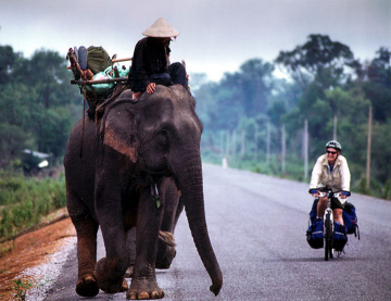 Bicycle as great as elephant