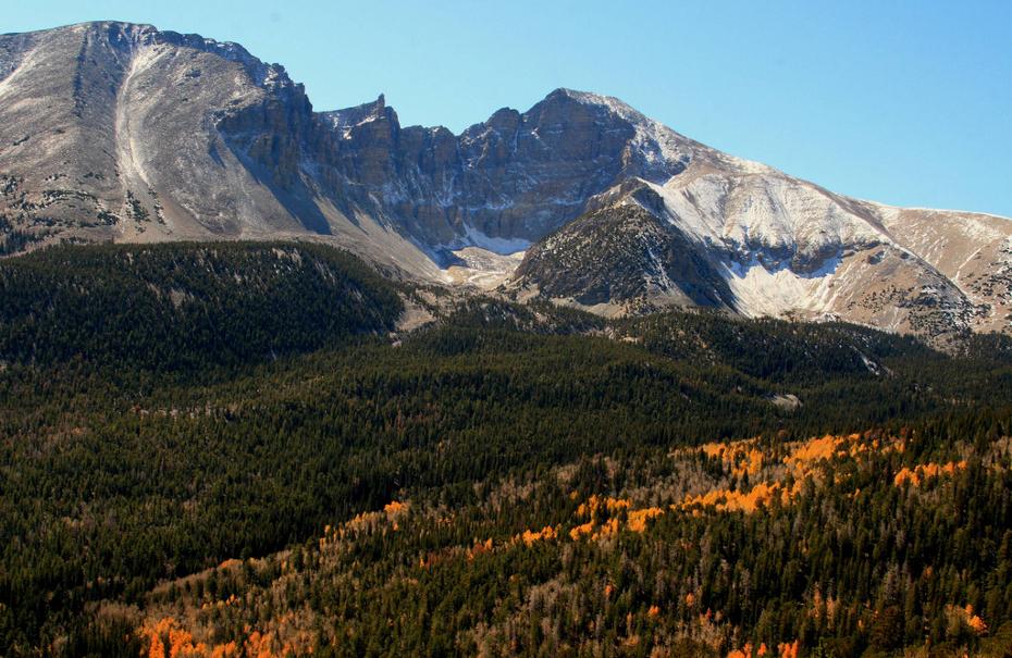 Great Basin NP vista