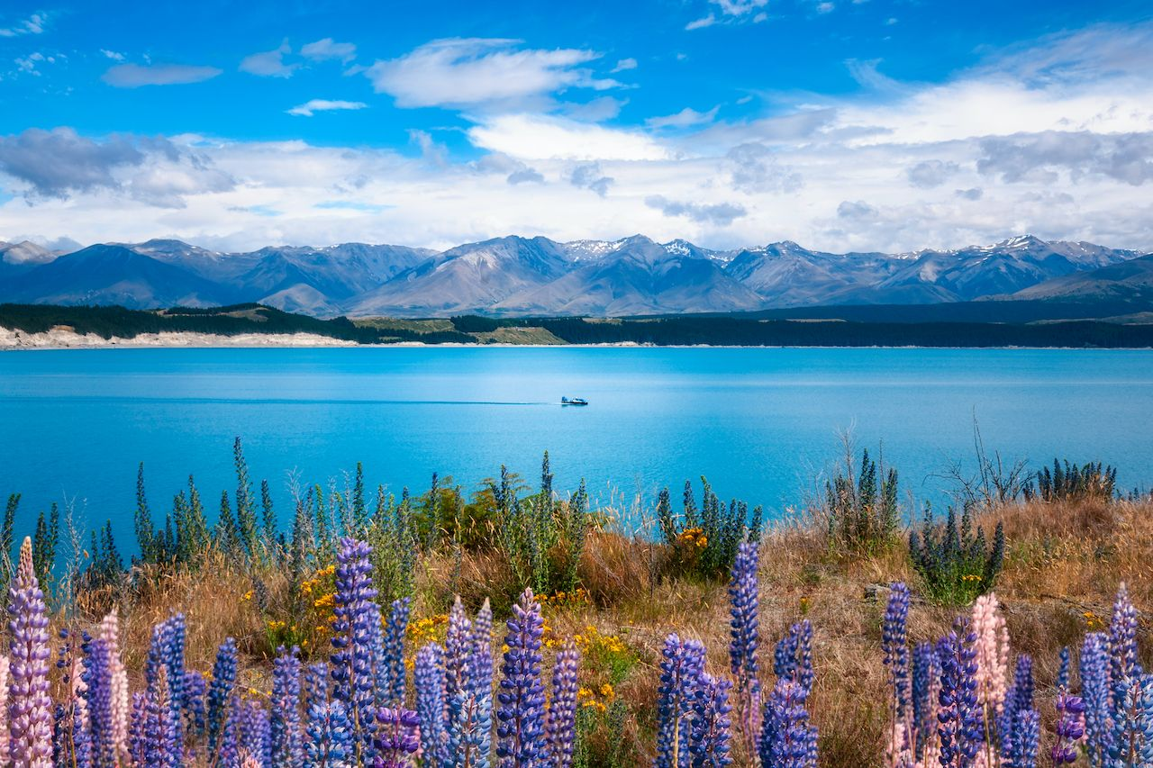 Lake Pukaki New Zealand clearest waters