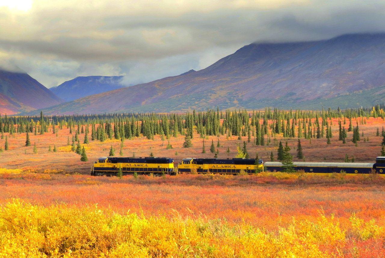 A fall foliage train ride on the Denali Star in Alaska