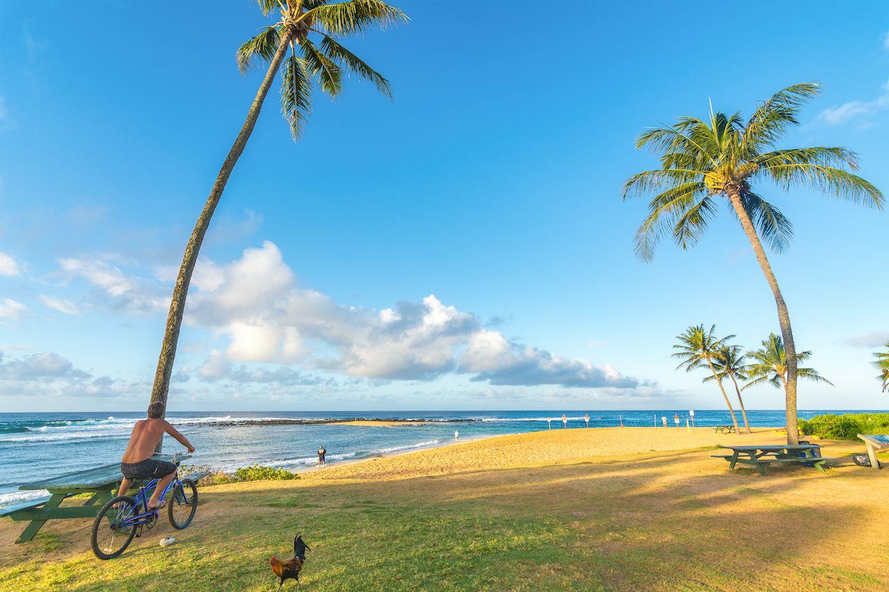 Kauai beach with cyclist, kauai hawaii