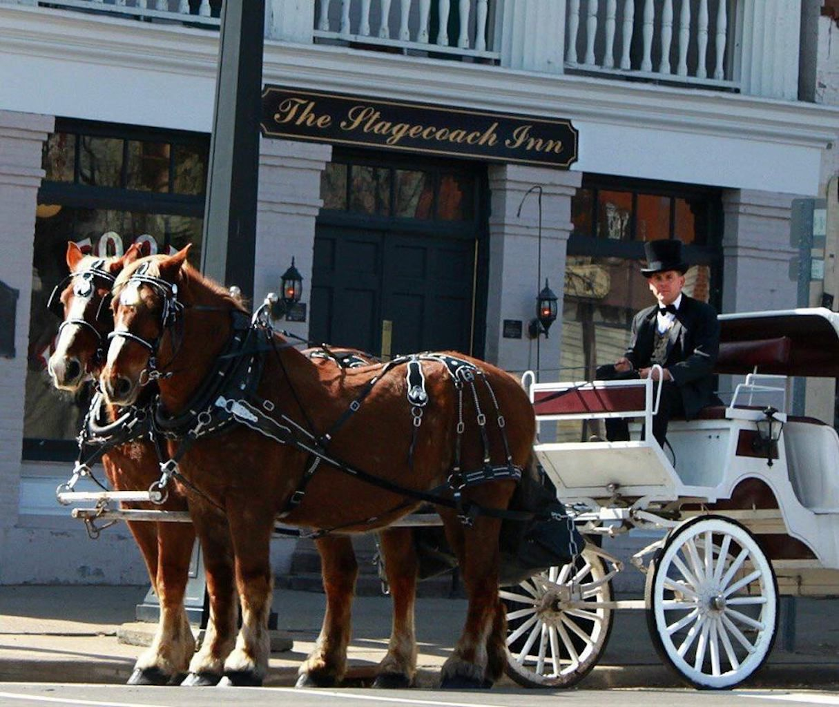Horse-drawn hearse with Marshall Carriage Co. and Ghost Tours in Marshall, MI