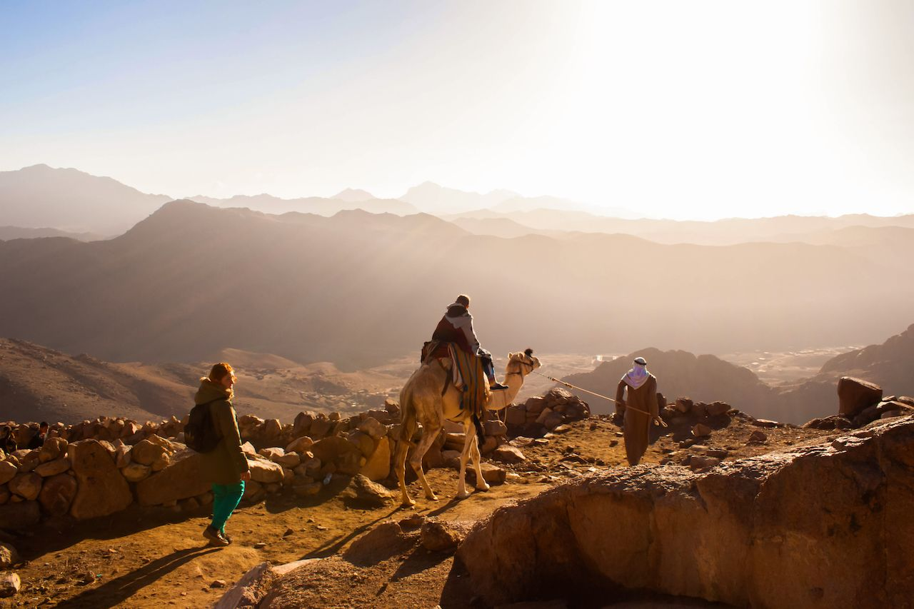 Camel riders going up the Sinai Mountain in Egypt