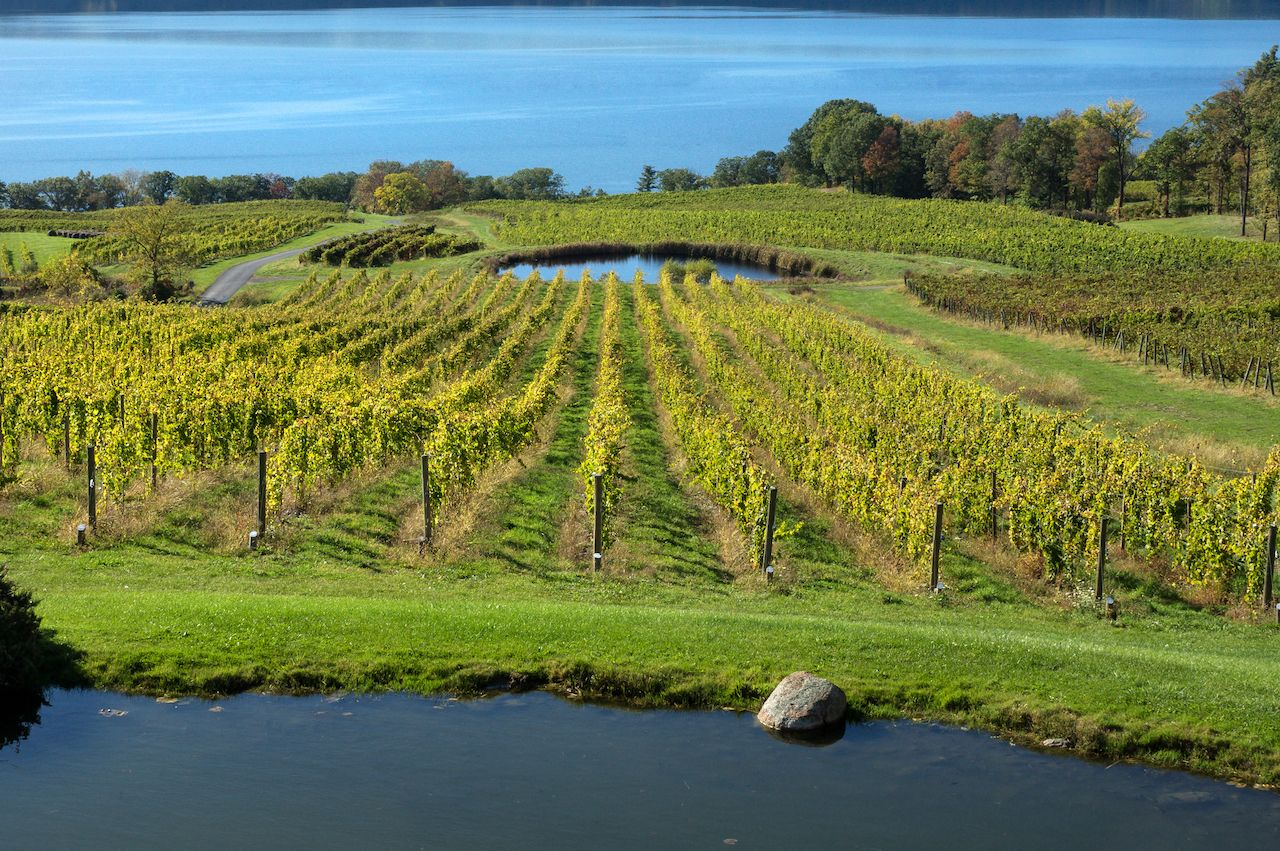 A stop on the Seneca Lake Wine Trail drinking tour in the Finger Lakes