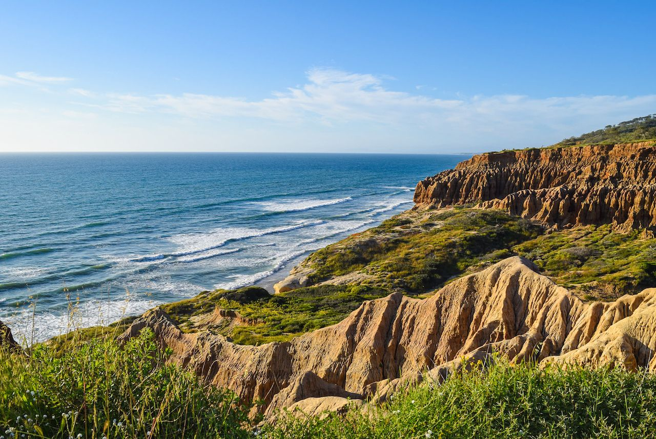 Whale watching in California at Torrey Pines and Cabrillo National Monument