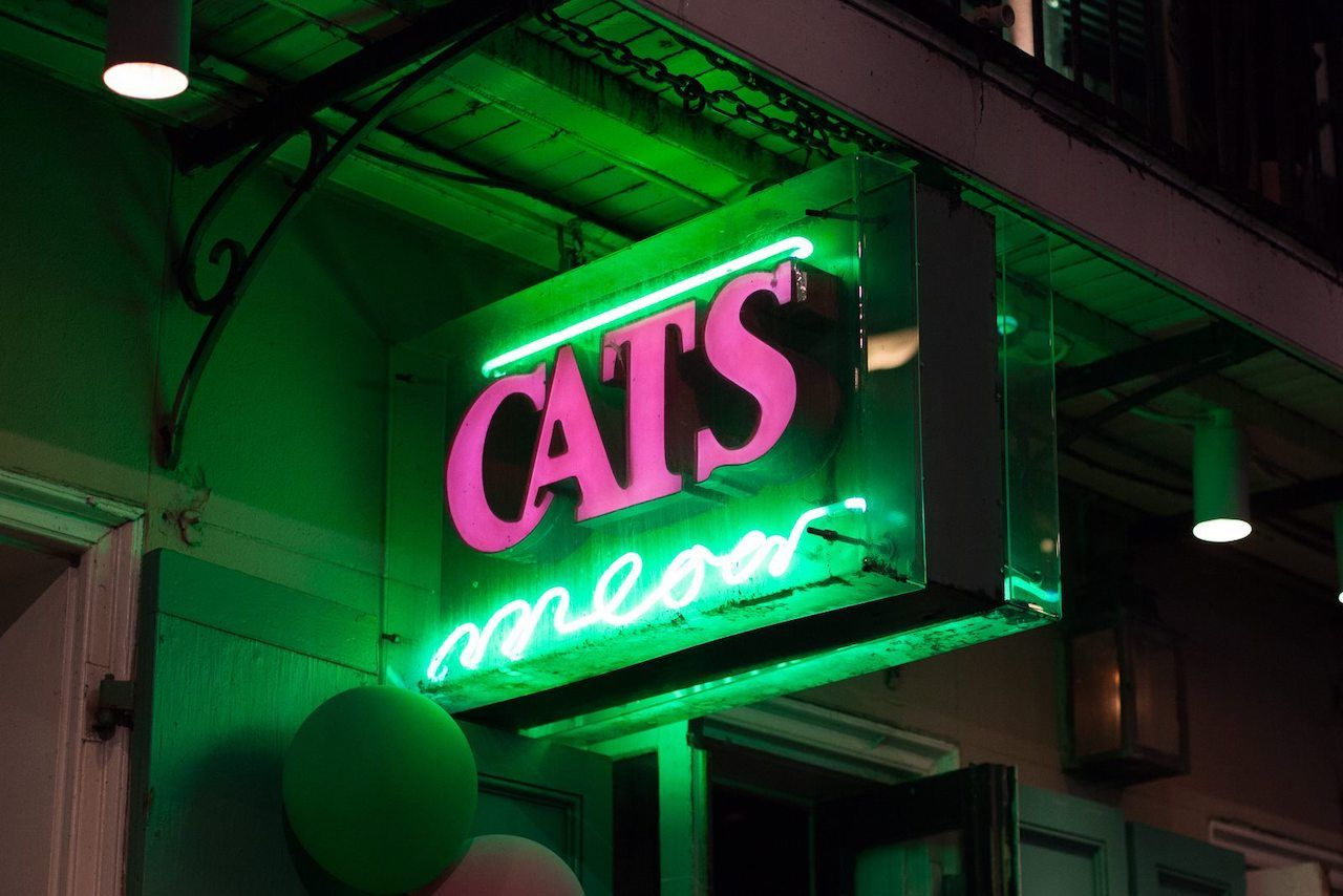Cats Meow in NOLA, Bourbon Street New Orleans