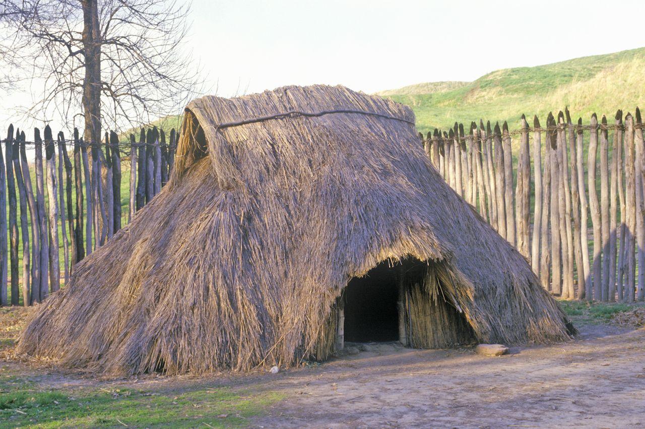 Prehistoric Mound, Cahokia, Illinois