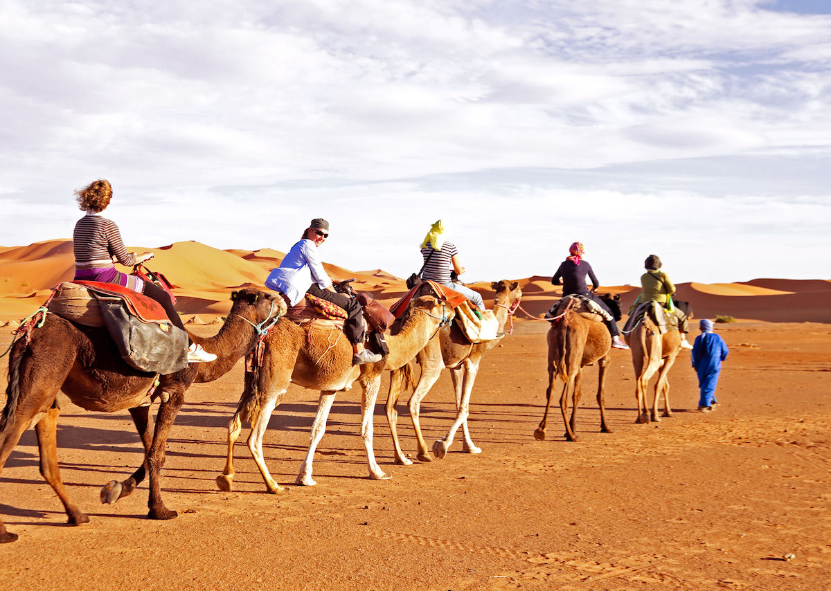 Is camel riding ethical? How to have a cruelty-free camel riding experience