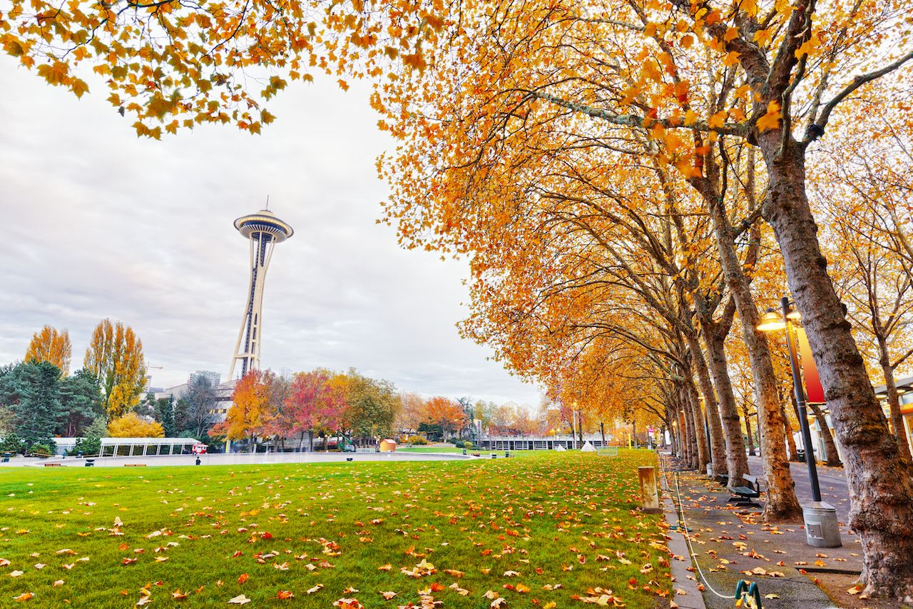 Seattle's foliage and green space make it a great fall vacation destination