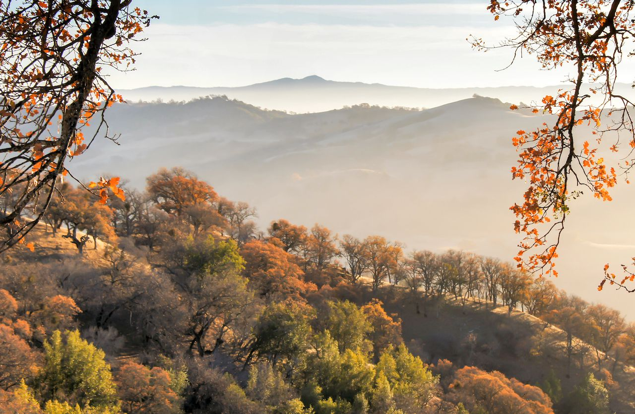San Jose on California's central coast is one of the best fall vacations in the US