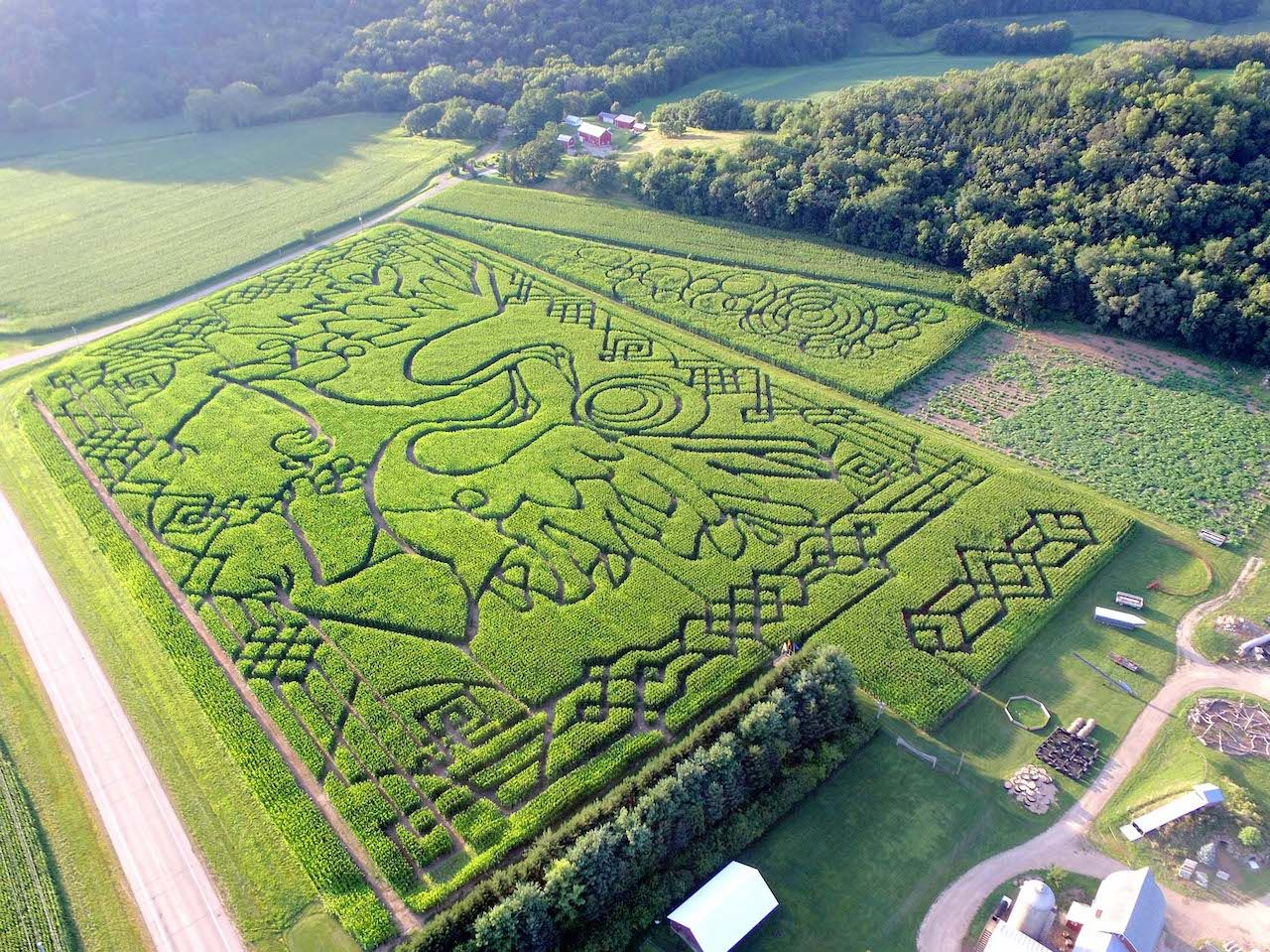 Treinen Farm Corn Maze and Pumpkin Patch in Lodi, Wisconsin