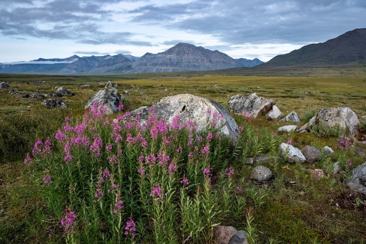 Gates-of-the-Arctic-National-Park-and-Preserve-Least-visited-National-Parks