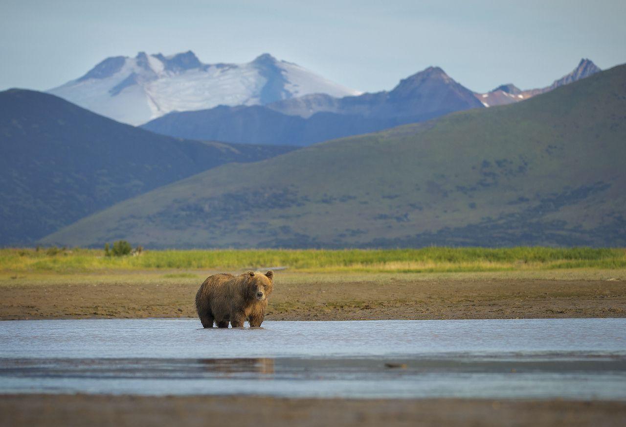 Katmai-National-Park-and-Preserve-least-visited-national-parks-470172362