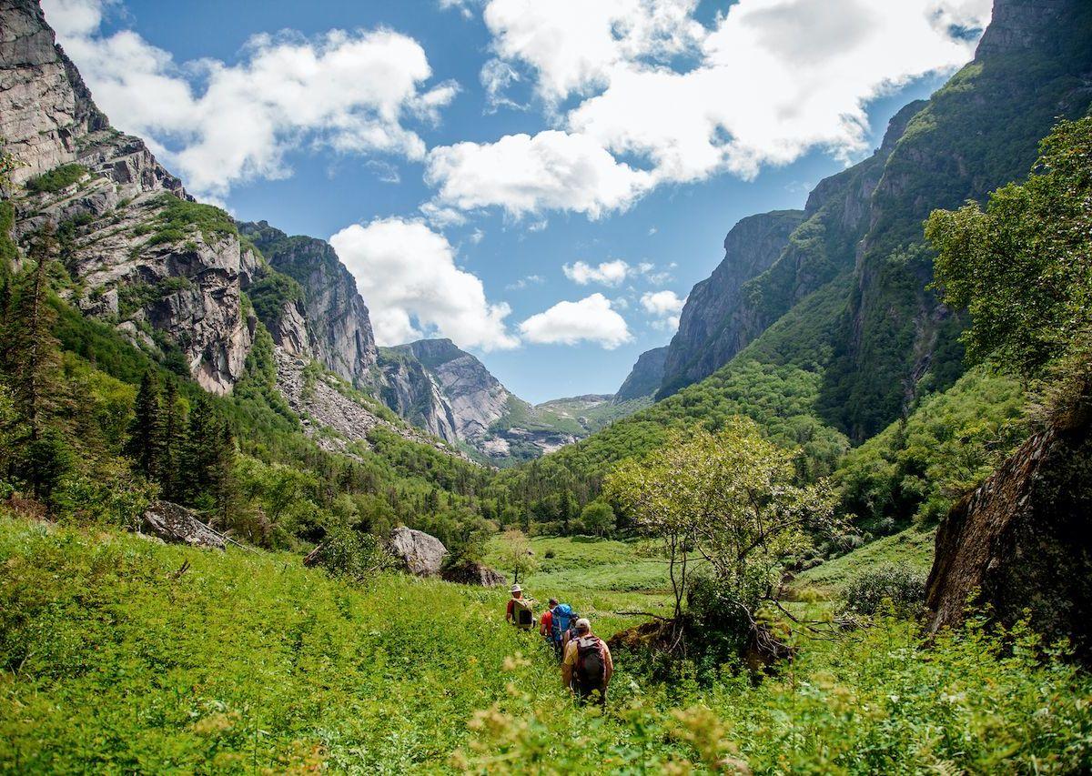 Newfoundland and Labrador: 7 incredible travel experiences
