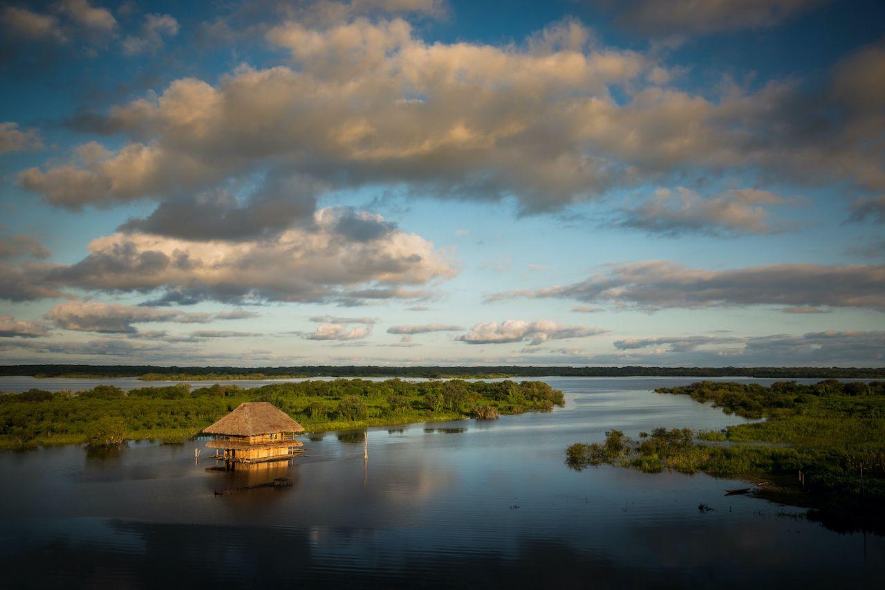 Hut in the amazon
