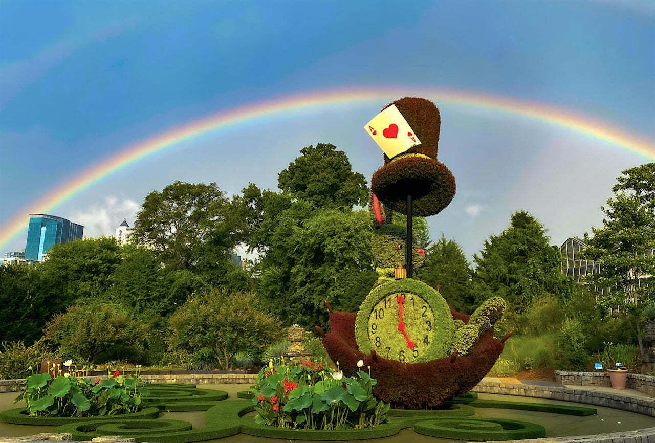 Atlanta Botanical Garden Debuts Alice In Wonderland Themed Exhibit