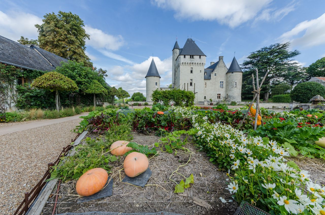 Loire Valley castle vegetable garden