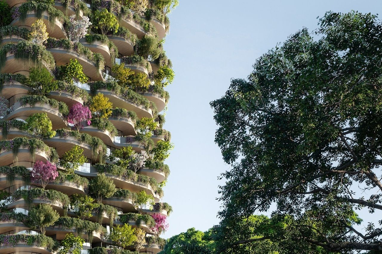 Urban Forest Project