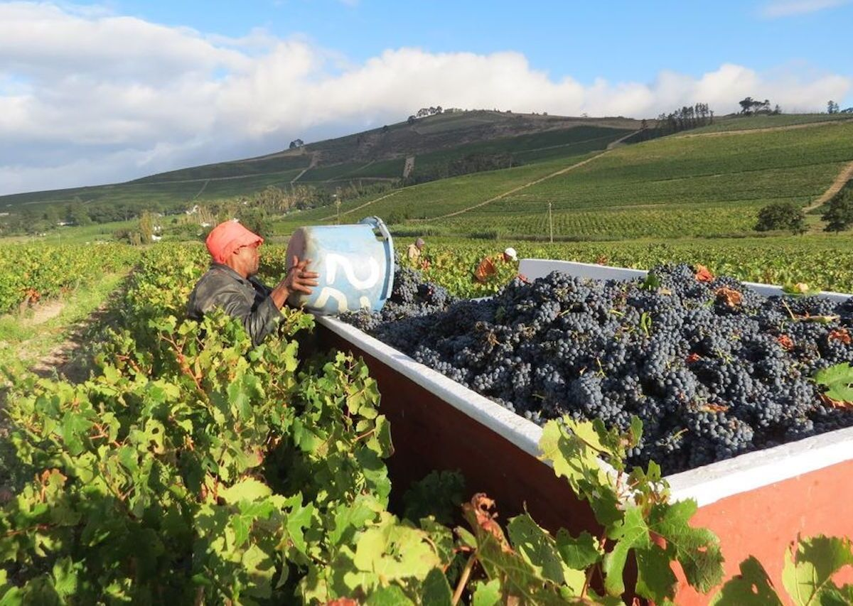 6 of the most remote wineries in the world