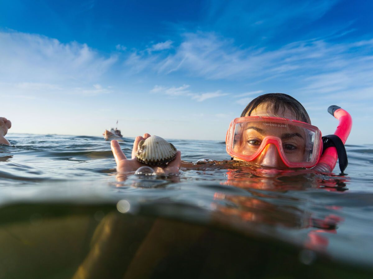 Family adventure guide: 8 incredible experiences on Florida's Sports Coast