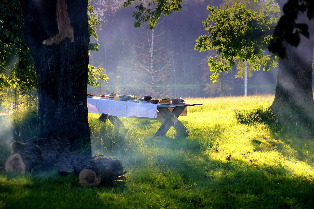 Picnic in the woods with set table