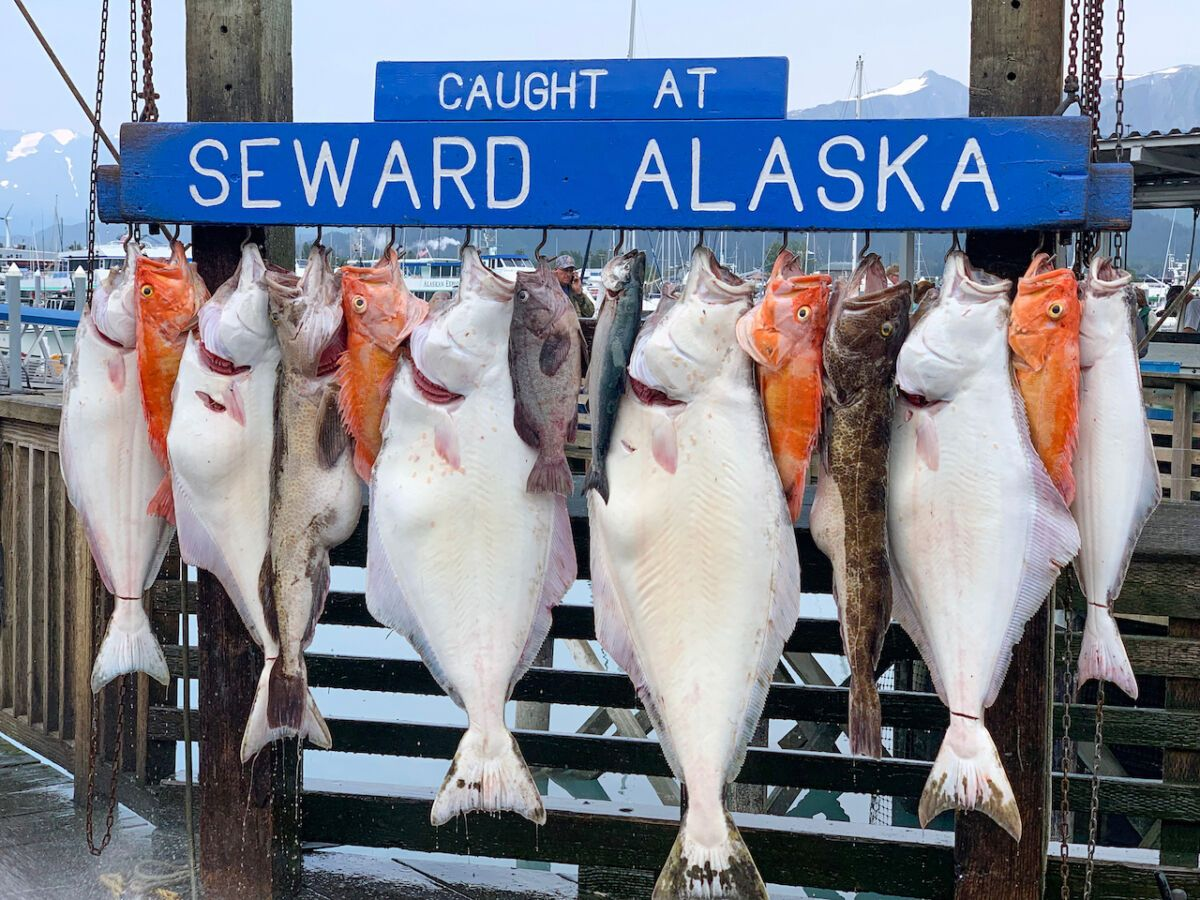 10 iconic Alaskan foods that show off the state's abundant natural resources