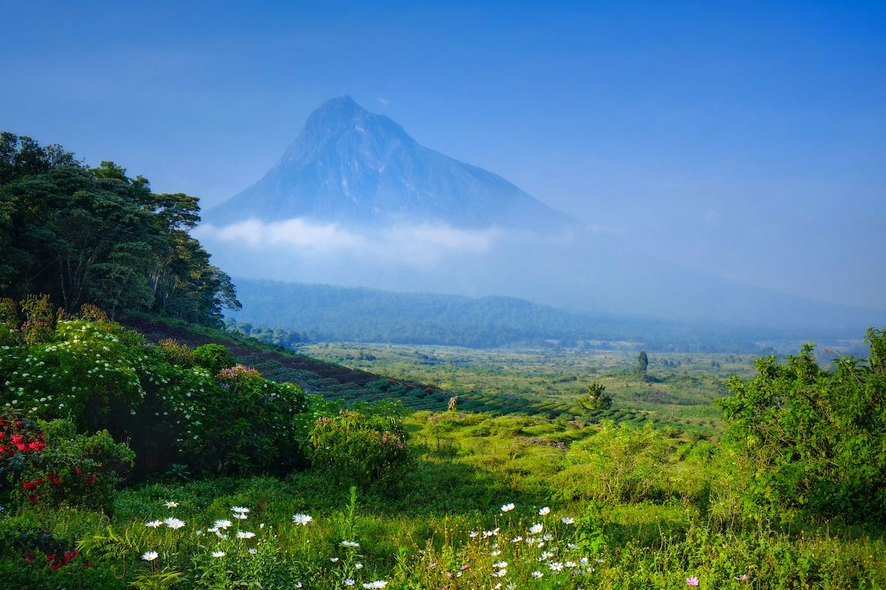 Virunga National Park, Democratic Republic of the Congo