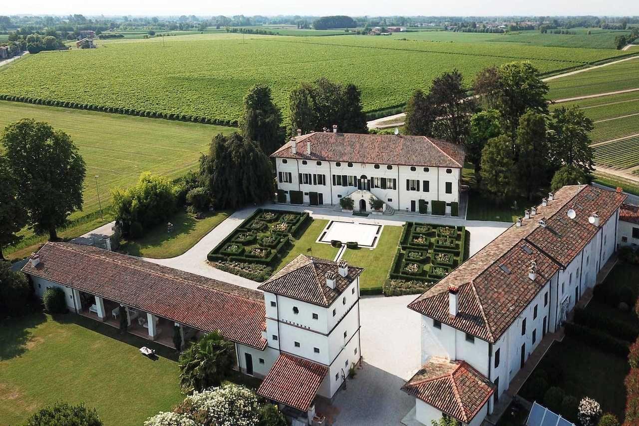 prosecco vineyard in italy