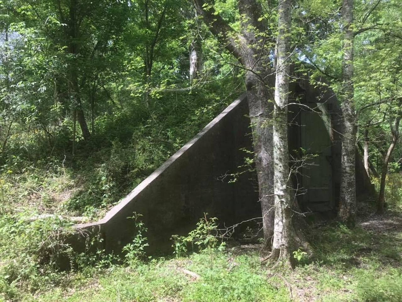 woodlands conservancy