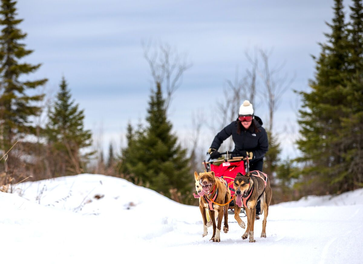 The 9 most epic winter experiences to have in the Midwest