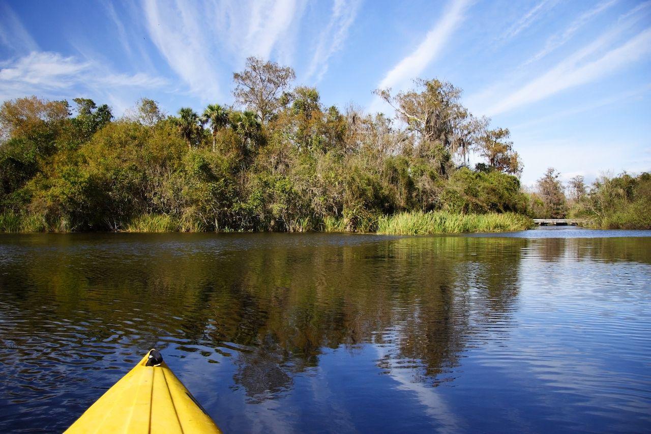 Kayaking the Turner River, Big Cypress National Preserve