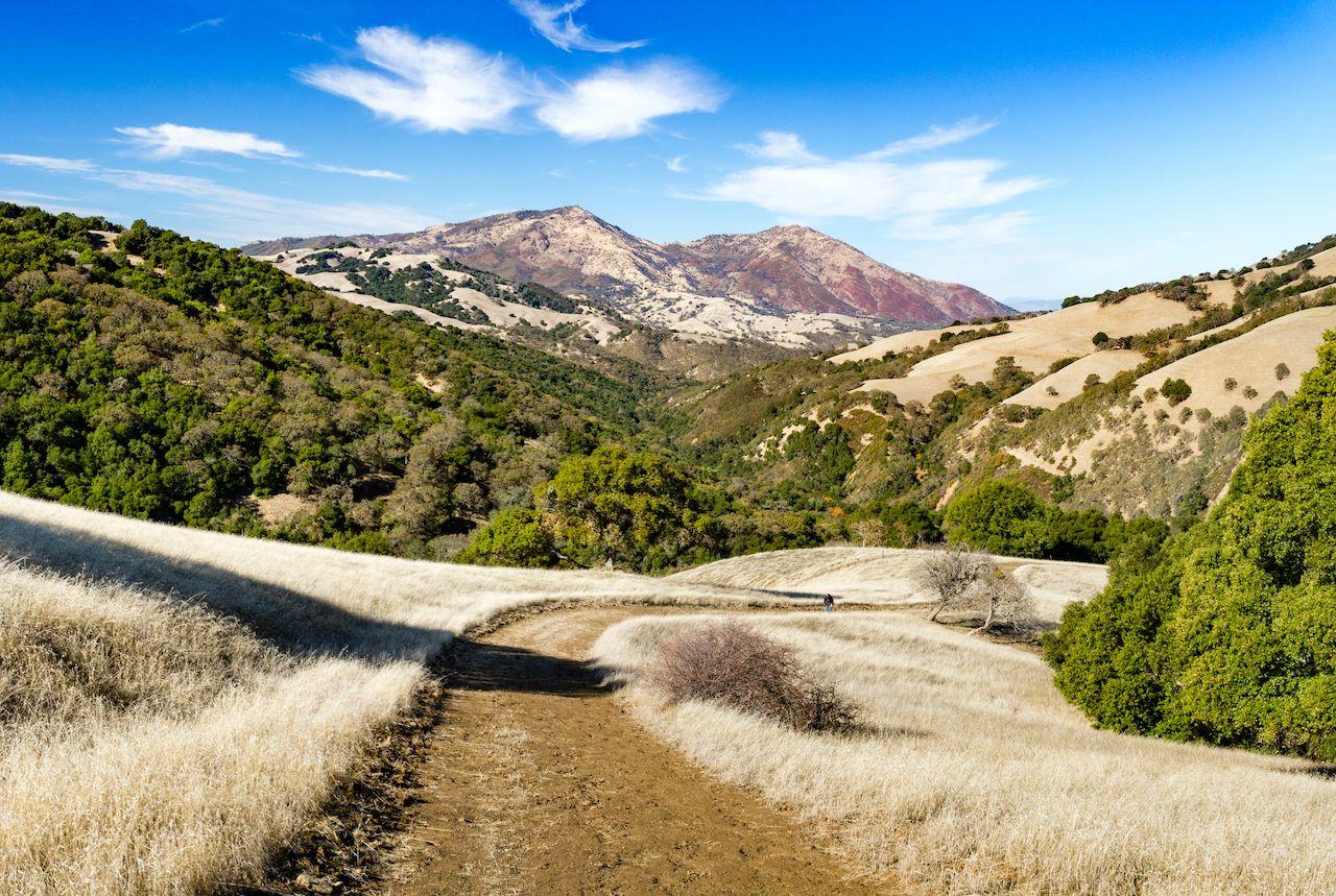 View of Mount Diablo