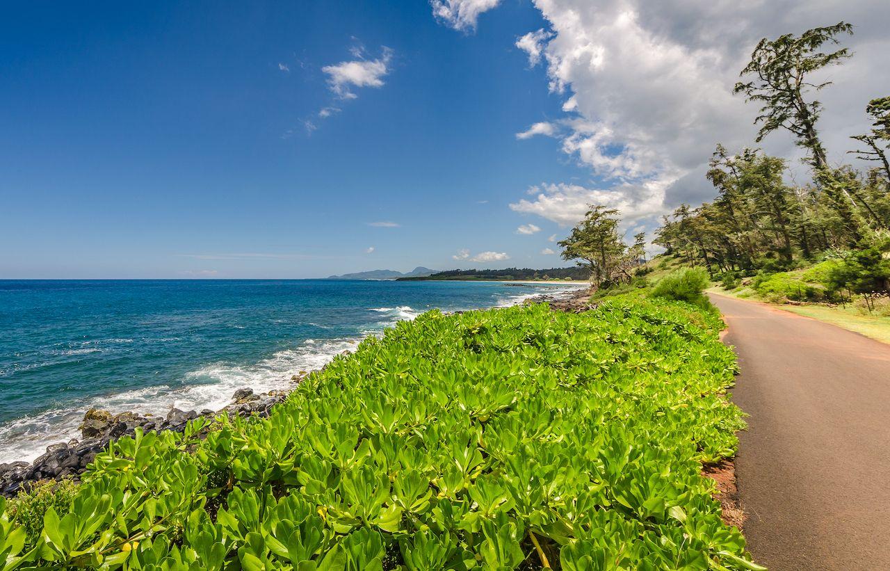 Walkway along the coast in Kauai, Hawaii