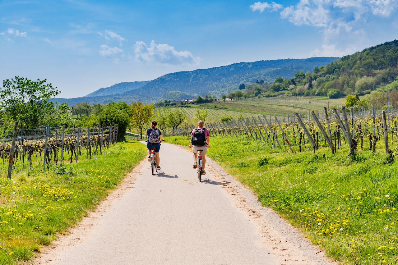 German wine: 5 itineraries for sampling the best the country has to offer