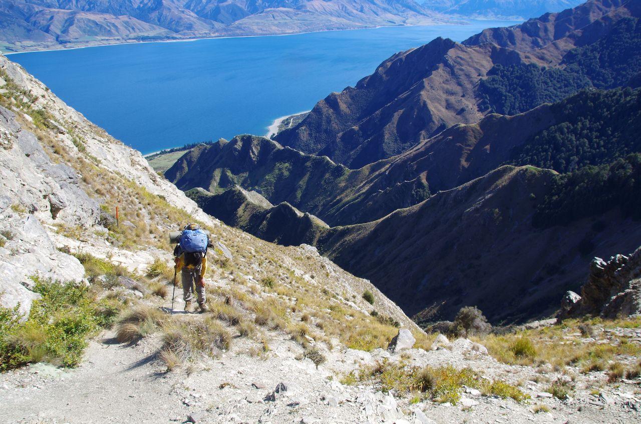 Breast hill track on the Te Araroa Trail
